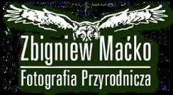Zbigniew Maćko Fotografia przyrodnicza